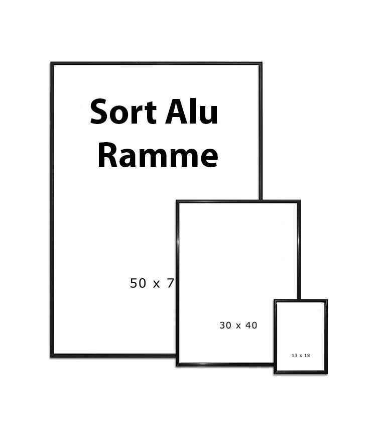 Folkekære CADRE alu-smal sort 50x60 - SORT ALU RAMMER - Løvstad Foto TT-96